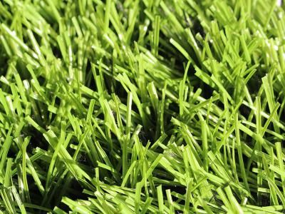 EN Series Artificial Grass